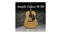 AMPLE SOUND AMPLE GUITAR M III の通販