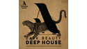 ARTISAN AUDIO DARK BEAUTY DEEP HOUSE の通販