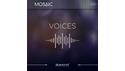 HEAVYOCITY MOSAIC VOICES HEAVYOCITY THANKSGIVING SALE!シネマティック音源最大50%OFF!の通販