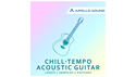 APOLLO SOUND CHILLTEMPO ACOUSTIC GUITAR の通販