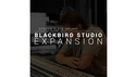 Steven Slate Drums Blackbird Studios Drums EXPANSION for SSD5 ★在庫限り特価!の通販