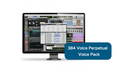 Avid 384 Voice Perpetual Voice Pack の通販