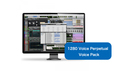 Avid 1280 Voice Perpetual Voice Pack の通販