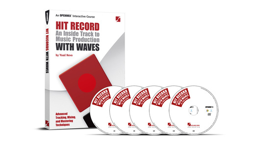 Waves Hit Record With Waves(日本語版)