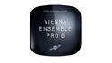 VIENNA VIENNA ENSEMBLE PRO 6 の通販