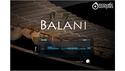 AcousticSamples Balani の通販