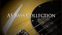 AcousticSamples AS Bass Collection の通販