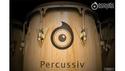 AcousticSamples Percussiv の通販