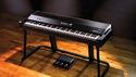 ROLAND V-Piano Evolution の通販