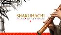 SONICA SHAKUHACHI ★在庫限り特価!の通販