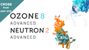 iZotope ANY STD to Ozone8/Neutron2 CROSS ★Ozone 8 & Neutron 2発売記念プライス!10月31日まで!の通販