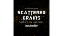 Audiority SCATTERED GRAINS ★50%OFF!!2017年11月30日(木)までの通販