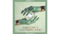 CAPSUN PROAUDIO AMBIENT SHIFT & DOWNTEMPO AURAS の通販