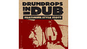 DRUM DROPS DRUMDROPS IN DUB VOL.1 / WAV+REX2 LOOPMASTERSイースターセール!サンプルパックが50%OFF!の通販