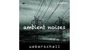 UEBERSCHALL AMBIENT NOISES/ELASTIK2 UEBERSCHALL バーチャルリアリティセール 50%OFF!の通販