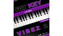 DIGINOIZ FAT KEY VIBEZ 2 の通販