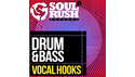 SOUL RUSH RECORDS DRUM & BASS VOCAL HOOKS の通販