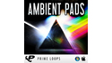 PRIME LOOPS AMBIENT PADS の通販