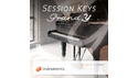 E-INSTRUMENTS SESSION KEYS GRAND Y の通販