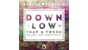CAPSUN PROAUDIO DOWN LOW - TRAP & TWERK の通販