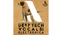 ARTISAN AUDIO DEEP TECH VOCALS & ELECTRONICA の通販