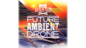RANKIN AUDIO FUTURE AMBIENT DRONE の通販