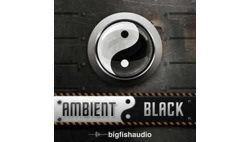 BIG FISH AUDIO AMBIENT BLACK BIG FISH AUDIO SUMMER SALE!