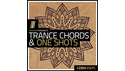 ZENHISER TRANCE CHORDS & ONE SHOTS SONICWIRE SUMMER SALE 2019の通販