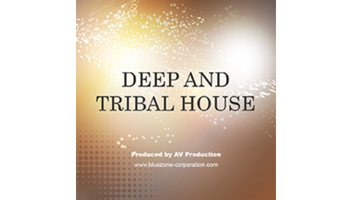 BLUEZONE DEEP AND TRIBAL HOUSE