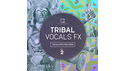 EARTH MOMENTS TRIBAL VOCAL FX VOL 2 の通販