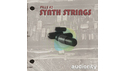 AUDIORITY PILLS2 SYNTHSTRINGS の通販