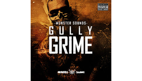 MONSTER SOUNDS GULLY GRIME