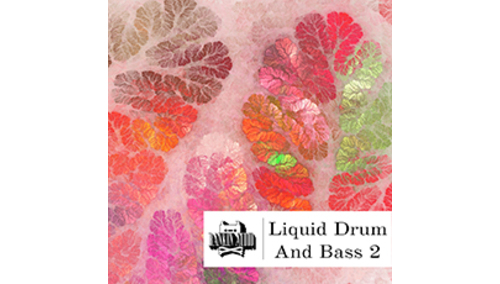 RANKIN AUDIO LIQUID DRUM & BASS 2
