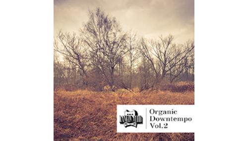 RANKIN AUDIO ORGANIC DOWNTEMPO VOL. 2