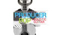 IN SESSION AUDIO PRODUCER POP ACOUSTIC GUITAR の通販