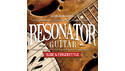IN SESSION AUDIO RESONATOR GUITAR の通販