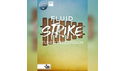 IN SESSION AUDIO FLUID STRIKE の通販
