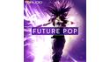 INDUSTRIAL STRENGTH TD AUDIO - FUTURE POP の通販