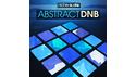 NICHE AUDIO ABSTRACT DNB の通販