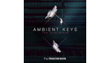 PRODUCTION MASTER AMBIENT KEYS の通販