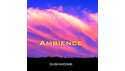 MUSIC EC AMBIENCE の通販