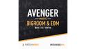 LOOPMASTERS BIGROOM & EDM AVENGER PRESETS の通販
