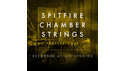 SPITFIRE AUDIO SPITFIRE CHAMBER STRINGS PROFESSIONAL の通販