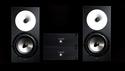 Amphion One18(Pair)+ Amp100 mono(Pair)+ Speaker Cable 2.5m (Pair) の通販