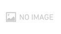 LYNX STUDIO TECHNOLOGY Custom Shop / LM-AIO8 の通販