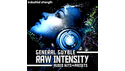 INDUSTRIAL STRENGTH GENERAL GUYBLE - RAW INTENSITY の通販