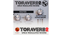 D16 Group TORAVERB 2 / SPACE MODULATED REVERB D16 group Black Friday Sale!全製品50%OFF!の通販