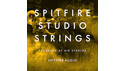 SPITFIRE AUDIO SPITFIRE STUDIO STRINGS の通販